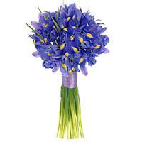 Бесплатная доставка цветов Днепропетровск