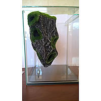 Керамическая декорация Aquatic Plants для нано аквариумов, фото 1