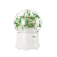 Увлажнитель воздуха (ароматизатор) Led лампа Remax Flowers Aroma Lamp RT-A700 Gypsophila
