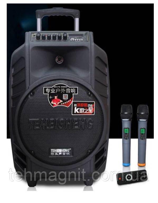 Колонка с аккумулятором Temeisheng SL15-08, 2 микрофона, МР3, BLUETOOTH, USB,SD
