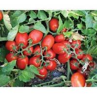 3402 F1 – томат детермінантний, 5000 шт Lark Seeds Ларк сідс