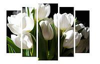 Модульная картина Декор Карпаты 120х80 см Белые тюльпаны (M5-274)