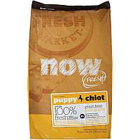 NOW Беззерновой для щенков с индейкой, уткой и лососем (Fresh Puppy Recipe Grain Free 28/18) 2.72 кг