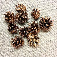 Шишки сосновые Бронза 10штук, фото 1