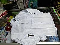 Белая Рубашка для мальчика Школа 146-164