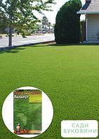 Трава газонная 'Лилипут' (Большой пакет) ТМ 'Весна' 10г, фото 1