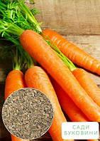 На развес Морковь 'Сладкая зимняя' ТМ 'Весна' цена за 15г