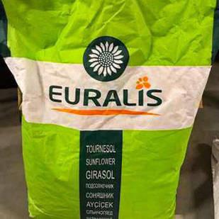Насіння соняшнику ЄС Ароматик СУ (Гранстрар) (Euralis )