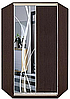 Шкаф-купе угловой 2 двери Стандарт 110х110 h-210, ТМ Феникс, фото 3