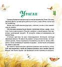 Чарівник Смарагдового міста. Книга Олександра Волкова, фото 2