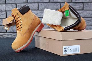 Женские (мужские) зимние ботинки Timberland 6 inch Yellow С МЕХОМ, фото 2