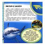 Підводний світ, фото 2