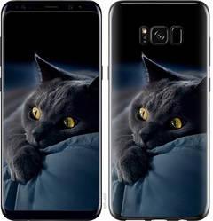 """Чехол на Samsung Galaxy S8 Дымчатый кот """"825c-829-328"""""""