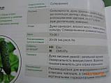 Мирабелл F1 семена огурца SEMINIS Голландия 250 шт, фото 2