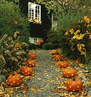 Принципы проектирования Halloween украшений