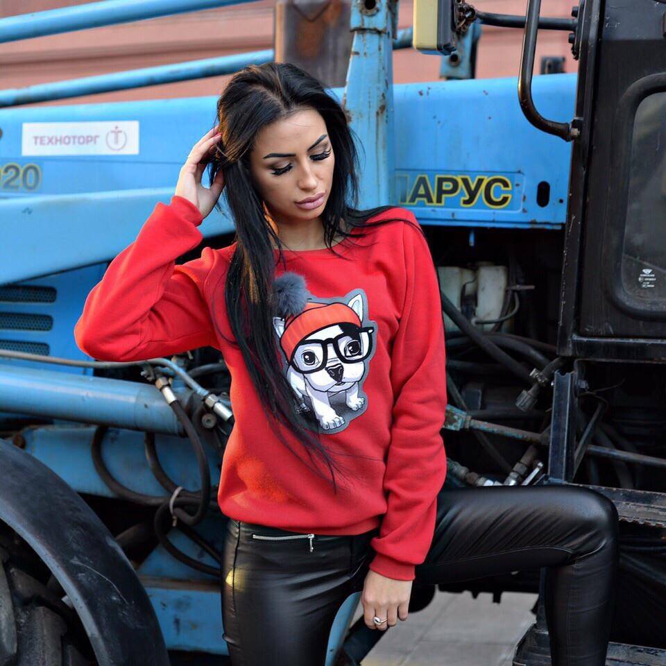 b6f1d0d64a31c8 Тёплая женская кофта с собачкой — купить недорого в Харькове в ...