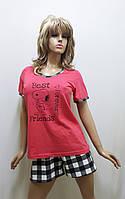 Пижама женская футболка и шорты хлопок 245