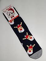 Новогодние носки женские без махры хлопок Calze Vita