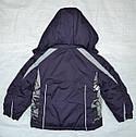 Куртка зимняя Lucky для девочки фиолетовая (Quadrifoglio, Польша), фото 8