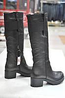 Зимние черные сапоги Notaro -766, фото 1