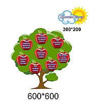 Правила класу нуш дерево з яблуками