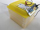 Инкубатор бытовой Теплуша Europe 112 автомат +12 в резервное питание, фото 2