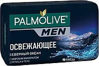 Мило Палмолів Man 90г Північний Океан (8693495037976)