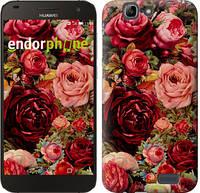 """Чехол на Huawei Ascend G7 Цветущие розы """"2701u-147-16700"""""""