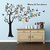 """Наклейка на стену """"Дерево мечты с рамками под фото"""" 250*180см"""