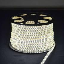 Светодиодная лента 3014-120 220В IP68, герметичная, белая, фото 3