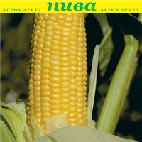 Уокер F1 насіння кукурудзи суперсолодкої Lark Seeds 25 000 насінин, фото 1
