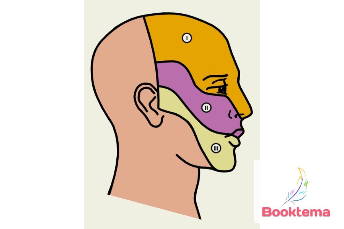 Вегетативные лицевые боли /Под редакцией Пузина