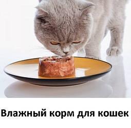 Влажный корм и консервы для взрослых кошек