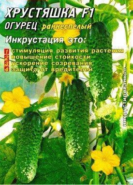 Семена огурцов пчелоопыляемых Хрустяшка F1 50 шт., фото 2