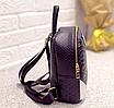 Рюкзак женский кожзам змеиный принт Черный, фото 5