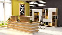 Industrial Reception - авторская мебель TOKA Ukraine design