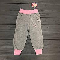 Детская одежда оптом Штаны спортивные для девочек  р.104-110-116-122