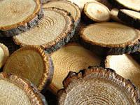 Слэбы срезы поперечные продольные различных пород деревьев