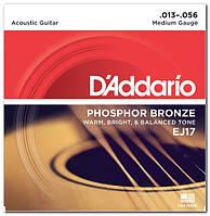 Струни для акустичної гітари D`ADDARIO EJ17 PHOSPHOR BRONZE MEDIUM 13-56