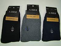Махровые мужские термо-носки Алия А-1 (41-48) код 13104, фото 1
