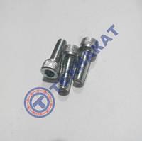 Винт М10х25 DIN912 оцинкованный, класс прочности 8.8