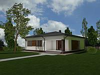 MS-030 проект одноэтажного дома с просторным крыльцом и терассой