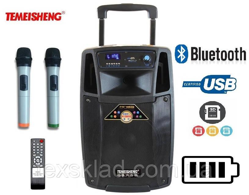 Колонка для выступлений SL10-01 с 2-мя микрофонами Bluetooth