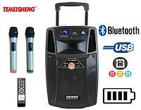 Колонка для выступлений SL10-01 с 2-мя микрофонами Bluetooth, фото 1