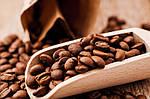 Кофе в зернах оптом