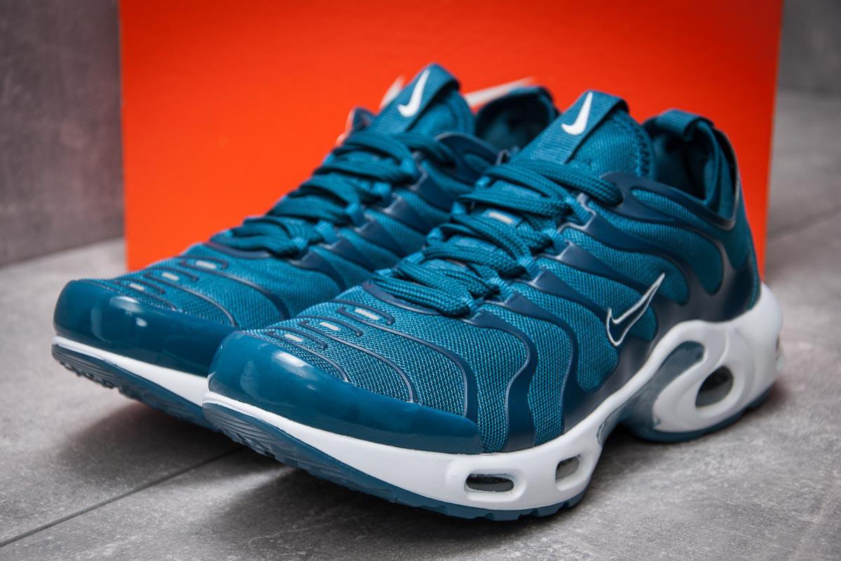 Кроссовки мужские Nike Air Tn, синие (12975) размеры в наличии ► [  43 (последняя пара)  ]