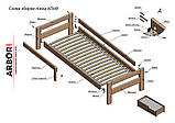 Ліжко дерево Альф односпальне 90х200 (Арбор), фото 7