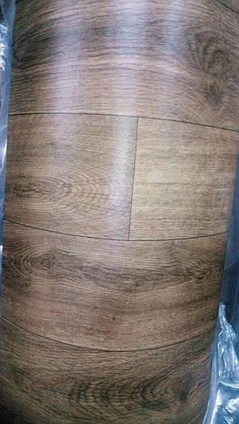 Линолеум Стандарт бытовой для дома и офиса, 2,5м ширина Натур, фото 2