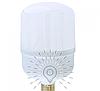 Светодиодная лампа 20Вт E27 T80 6500K