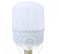 Светодиодная лампа 30Вт E27 T100 6500K, фото 1